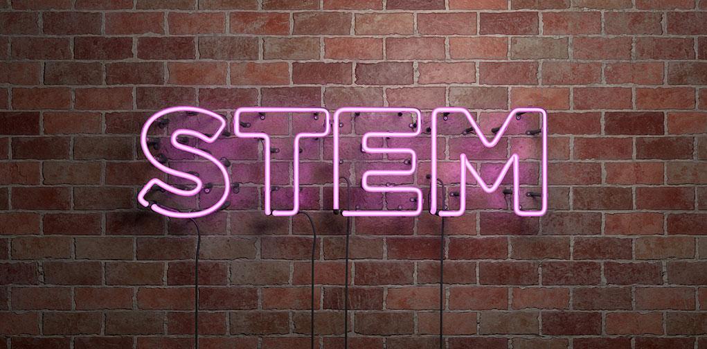 Empowering Girls in STEM AI